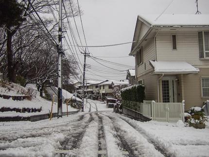 たまプラーザも大雪1